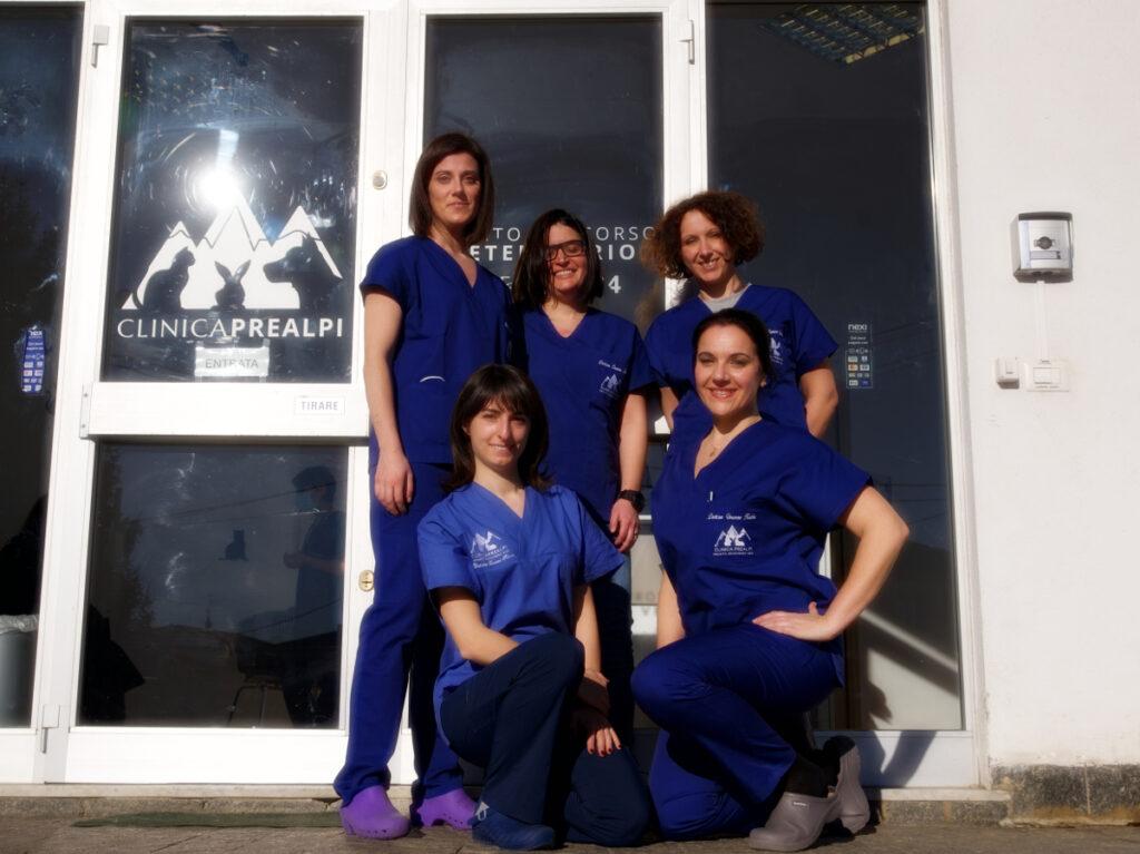 team veterinari